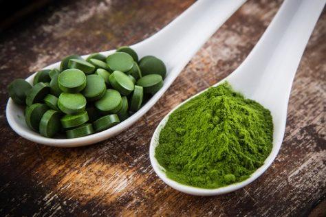 algae benefits